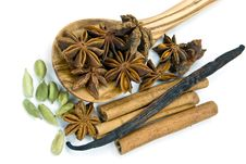 Free Cardamom With Cinnamon And Chinese Anise Royalty Free Stock Photography - 8582197