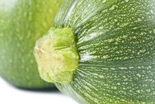 Free Globe Zucchini Royalty Free Stock Photo - 8582435