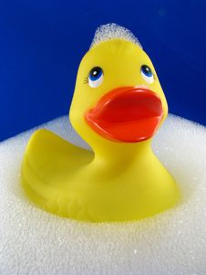 Rubber Ducky With Suds Stock Images
