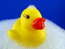 Rubber Ducky With Suds Royalty Free Stock Images