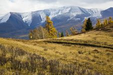 Free Meadow And Mountains Royalty Free Stock Photography - 8583397