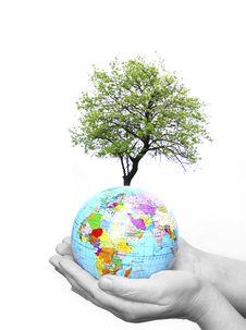 Free Globe Royalty Free Stock Images - 8584679