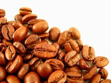 Free Coffee Beans Royalty Free Stock Image - 8585376