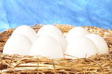 Free White Eggs In Golden Nest Royalty Free Stock Photos - 8586628