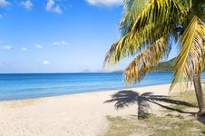 Free Exoticism Royalty Free Stock Images - 8586649