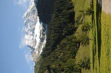 Free Alpine 088 Stock Photos - 8588053
