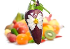 Free Vegetables & Fruits Isolated Royalty Free Stock Photos - 8589498