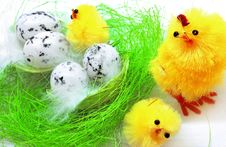 Free Easter Chickens Royalty Free Stock Photography - 8589957