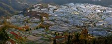 Free China Yunnan Hani Terrace View Stock Photography - 8590182
