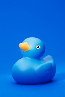 Free Blue Rubber Duck On Blue Background Stock Image - 8592231