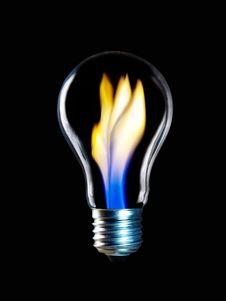Free Lightbulb Royalty Free Stock Images - 8592459