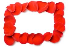 Free Red Rose Petals Frame Stock Photography - 8593512
