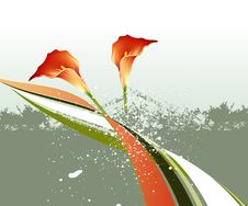 Free Spring Flower Background Royalty Free Stock Photography - 8594117