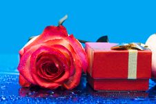 Gift Box And Rose Royalty Free Stock Image