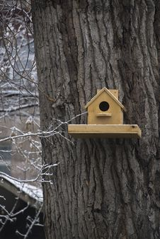Nestling Box On The Tree Royalty Free Stock Images