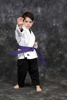 Free Karate Palm Heel Strike Royalty Free Stock Photography - 8599167