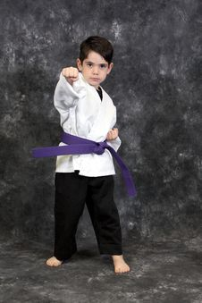 Free Martial Arts Puch Boy Stock Photo - 8599170