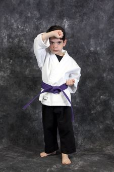 Free Martial Arts Puch Boy Royalty Free Stock Photo - 8599175