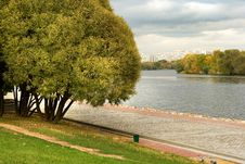 Free Autumn Park 5 Stock Image - 8599311
