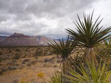 Free Nevada Royalty Free Stock Image - 8599856