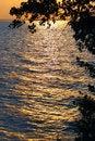 Free Yellow Sunset. Royalty Free Stock Image - 869546