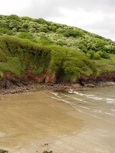 Free Beach With Cliff Greenery Stock Photo - 861130