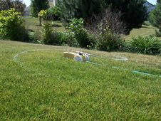 Free Lawn Sprinkler Royalty Free Stock Images - 864879