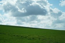 Free Grass And Sky Royalty Free Stock Photography - 865507