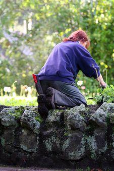 Free Woman Gardening Royalty Free Stock Photos - 866348