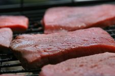 Free Grill Stock Photo - 868520