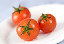 Free Tomatoes Royalty Free Stock Image - 869406