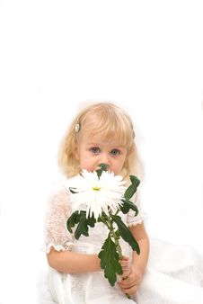 Free Beautiful Little Girl Stock Photography - 8600202