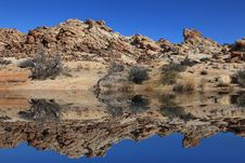 Free Desert Reflections Stock Photo - 8600280