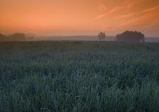 Free Foggy Sunrise Stock Image - 8601641