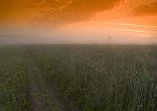 Free Foggy Sunrise Stock Photo - 8602660