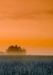Free Foggy Sunrise Royalty Free Stock Image - 8602766