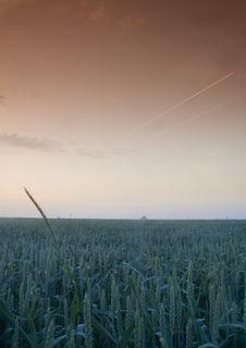 Free Foggy Sunrise Stock Photo - 8602820