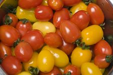 Free Tomatoes Stock Photography - 8603472