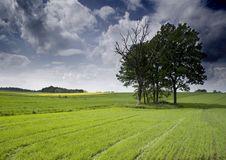 Free Non-urban Scene Stock Image - 8603541