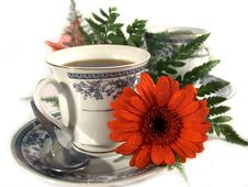 Free Black-coffee Royalty Free Stock Image - 8604746