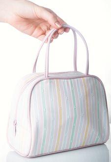 Free Female Bag Royalty Free Stock Image - 8605146
