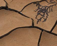 Free Desert Chocolate-02 Stock Images - 8605484