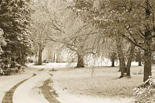 Free First Snow Stock Images - 8605554