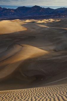 Free Sunrise Mesquite Sand Dunes-03 Stock Photography - 8605592