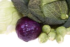 Free Cabbages Stock Image - 8606301