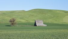 Palouse Barn Stock Photos