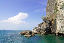 Free Scuba Diving. Stock Photos - 8607283