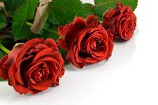 Free Red Rose Bouquet Royalty Free Stock Image - 8607386