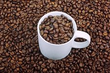 Free Cup And Beans. Stock Images - 8608664