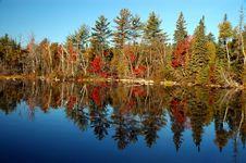 Free Fall Scene At Flack Lake Stock Images - 8609294